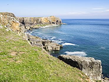 Coast at St. Govan, Pembrokeshire Coast National Park, Pembrokeshire, Wales, United Kingdom, Europe