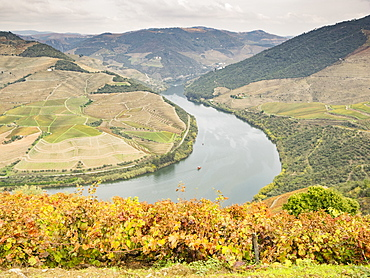 View over the River Duoro in autumn, Portugal, Europe