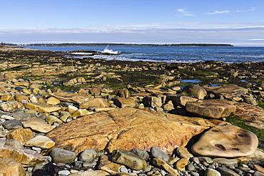 Beach at Seawall, Mount Desert Island, near Arcadia National Park, Maine, New England, United States of America, North America