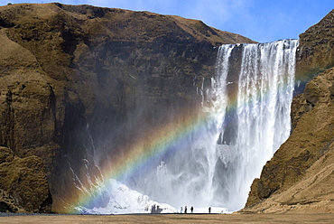Rainbow over Skogafoss waterfall, South Iceland, Iceland, Polar Regions
