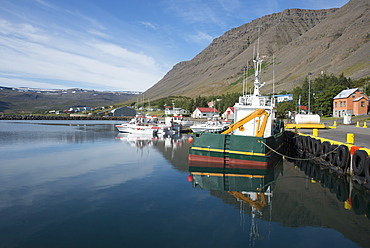 Boats in the harbour at the village of Bildudalur, West Fjords, Iceland, Polar Regions