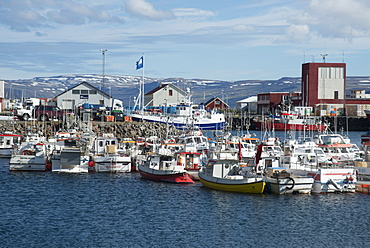 Fishing boats in the harbour at Patreksfjordur, West Fjords, Iceland, Polar Regions