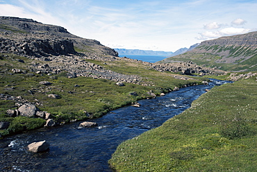 River flowing into the fjord, in the West Fjords, Iceland, Polar Regions