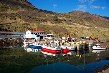 The fishing port of Nordurfjordur, Arneshreppur, West Fjords, Iceland, Polar Regions