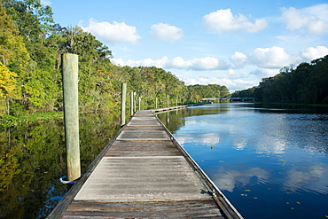 Boardwalk along Wades Creek, near St. Augustine, Florida, United States of America, North America
