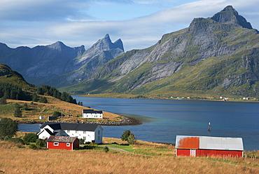 Farmhouses in the country, Lofoten Islands, Nordland, Norway, Scandinavia, Europe