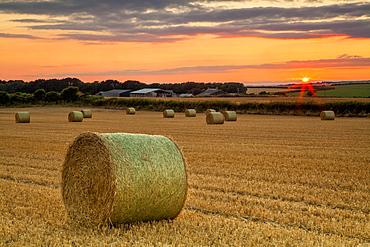 Southerndown, Glamorgan Heritage Coast, Vale of Glamorgan, Wales, UK