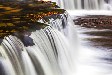 Horseshoe Falls, near Pontneddfechan, Brecon Beacons National Park, Powys, Wales, United Kingdom, Europe