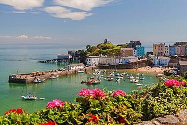 Tenby Harbour, Pembrokeshire, Wales, United Kingdom, Europe