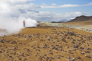 Tourists around the steam jets at Namaskard thermal area, Hverarond, near Lake Myvatn, North area, Iceland, Polar Regions