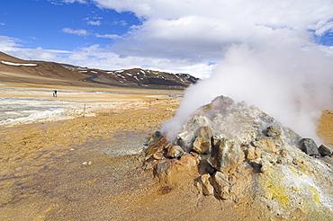 Steam jet at Namaskard thermal area, Hverarond, near Lake Myvatn, North area, Iceland, Polar Regions