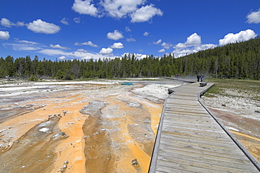 Wooden boardwalk over the mineral sinter formations on Geyser Hill, Upper Geyser Basin, Yellowstone National Park, UNESCO World Heritage Site, Wyoming, United States of America, North America