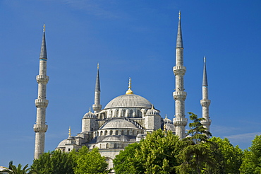 The Blue Mosque (Sultan Ahmet Camii) with domes and minarets, Sultanahmet, central Istanbul, Turkey, Europe