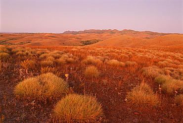 Stokes Lookout, Flinders Range, South Australia, Australia, Pacific