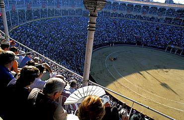 Spain, Madrid, Plaza De Toros, Six Toros Corrida With Matador Julian Lopez El Juli Hold On May 27th 2003 (San Isdro Feria)