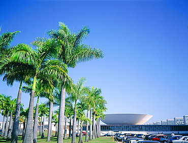 Brazil, Goias, Brasilia, The Administrative Capital Created Par President Kubitschek And Designed By Brasilian Town Planner Lucio Costa & Architect Oscar Niemeyer, The Congress Palace (Congresso) And Palmes Lining The Road