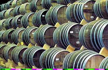 Cognac aging in barrels in cellars, Charente, France, Europe