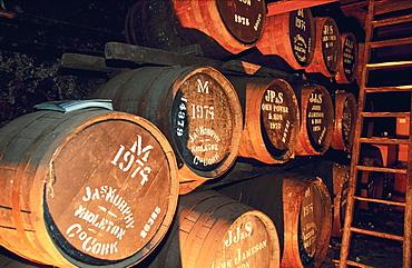 Ireland, Dublin, Jameson Whisky Cellars