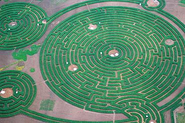 Aerial view of the maze, labyrinthus, Reignac-sur-Indre, Touraine, France, Europe