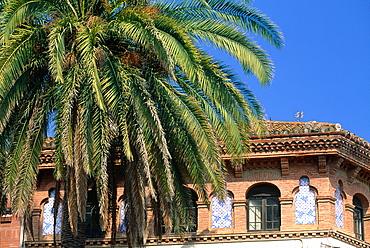 Spain, Catalonia, Barcelona, Palme And Facade