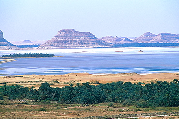Egypt, The Lybic Desert And Oasis , Overview On The Salted Lake In The Siwa Oasis