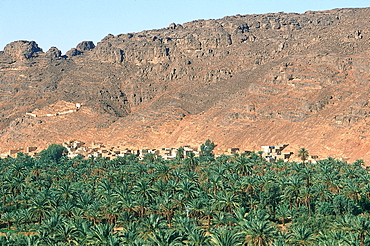 Algeria, Sahara, Tassili M'ajjer, Oasis Of Djanet, The Palm Grove Seen From The Ancient Citadel