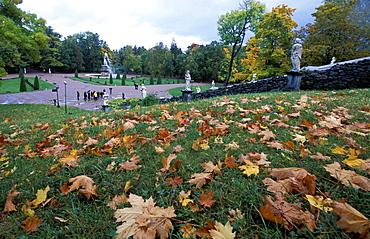 Russia, Saint Petersburg, Peterhof (Petrovorets) Castle, The Park In Autumn, Fallen Leaves