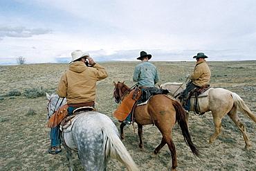 Greybull, Wyoming, United States of America, North America