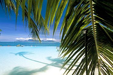 Beach, Tahiti, Society Islands, French Polynesia, Pacific