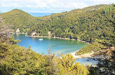 Bark Bay, elevated view, Abel Tasman National Park, Nelson, South Island, New Zealand, Pacific