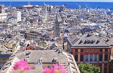 Genoa old town view, Genoa, Liguria, Italy, Europe,