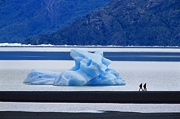 Hikers walking in front of a floating iceberg, Lake Gray, Torres del Paine National Park, Patagonia, Chile, South America