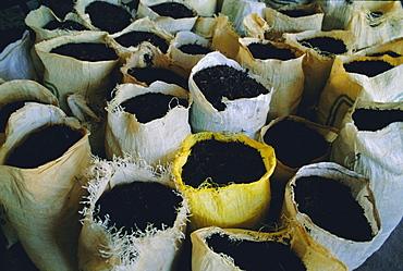 Sacks of tea, Melfort Tea Factory, Nuwara-Eliya region, Sri Lanka