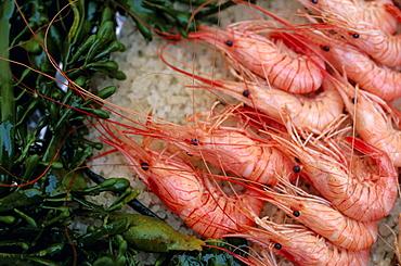 Crevettes (prawns), Le Bistrot de Bernard, Ars, Ile de Re, Charente Maritime, France, Europe
