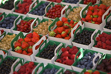 Fruit and berries, Provence, France, Europe