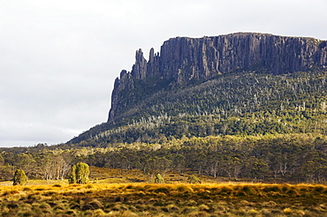 Mount Oakleigh at New Pelion on the Overland Track, Cradle Mountain Lake St. Clair National Park, part of Tasmanian Wilderness, UNESCO World Heritage Site, Tasmania, Australia, Pacific