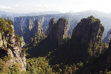 Karst limestone rock formations at Zhangjiajie Forest Park, Wulingyuan Scenic Area, UNESCO World Heritage Site, Hunan Province, China, Asia