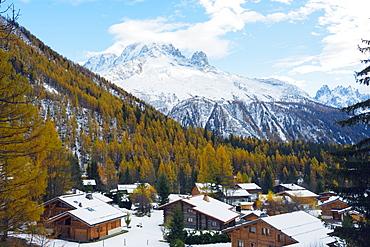 Autumn colours at Montroc le Planet, Chamonix, Rhone Alps, Haute Savoie, French Alps, France, Europe