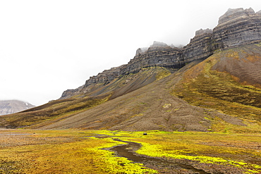 Skansen in Billefjorden, Spitsbergen, Svalbard, Arctic, Norway, Europe