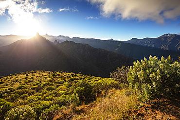 Roque Nublo and Roque Bentayga at sunrise, Gran Canaria, Canary Islands, Spain, Atlantic, Europe