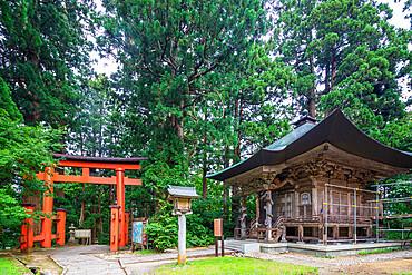 Torii gate on Mount Haguro, Dewa Sanzan Hagurosan temple, Yamagata Prefecture, Honshu, Japan, Asia