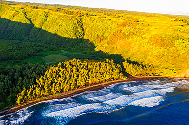 Aerial view of north shore, Pololu Valley, Big Island, Hawaii, United States of America, North America