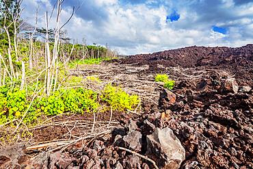 Lava flow, Big Island, Hawaii, United States of America, North America