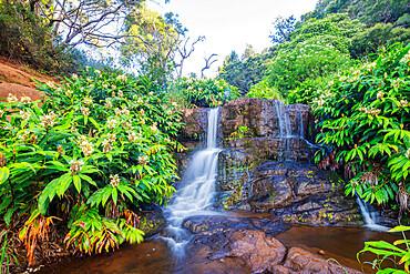 Waterfall, Waimea Canyon State Park, Kauai Island, Hawaii, United States of America, North America