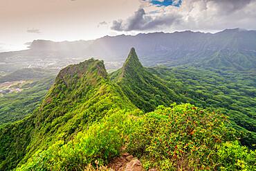Three Peaks trail, Oahu Island, Hawaii, United States of America, North America
