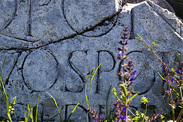 S.P.Q.R. The senate & the Roman people built Alba Fucens