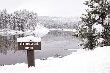 Yellowstone River, Yellowstone National Park, UNESCO World Heritage Site, Wyoming, United States of America, North America