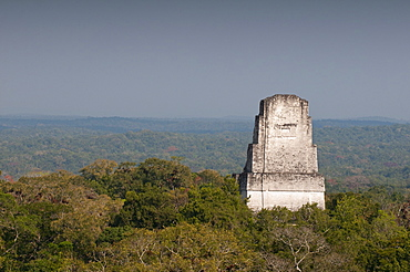 Temple III, Mayan archaeological site, Tikal, UNESCO World Heritage Site, Guatemala, Central America
