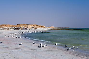 Khaluf, Oman, Middle East