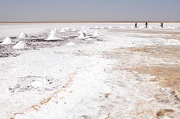 Salt flats near Shannah, Oman, Middle East